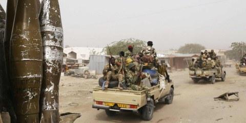 Truppen aus Kamerun, Niger und Tschad unterstützen den Nachbarn Nigeria gemeinsam im Kampf gegen Boko Haram und geraten damit selbst ins Visier. © REUTERS/Emmanuel Braun