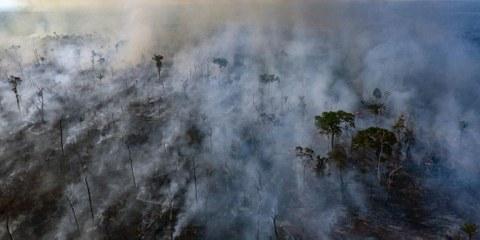 Luftaufnahmen von Amnesty International vom 23. August 2019: Waldbrand in einem indigenen Gebiet im Bundesstaat Mato Grosso. © Amnesty International