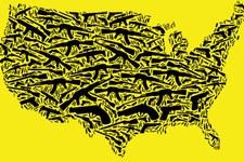 Amnesty International erklärt Waffengewalt zu Menschenrechtskrise