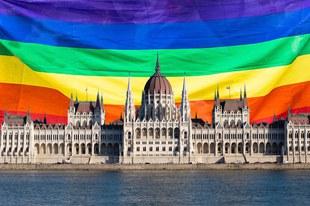 Queer-feindliches Gesetz stigmatisiert LGBTI*-Community