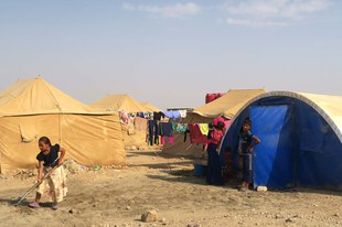 Brutale Vergeltungsaktionen gegen Iraker, die aus IS-Gebieten fliehen
