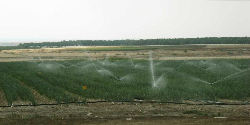 Ungleiche Verteilung: Für die Bewässerungsanlagen israelischer Siedlungen hat es immer genug Wasser. © Amnesty International