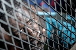 Europäische Regierungen mitverantwortlich für Folter und Misshandlungen