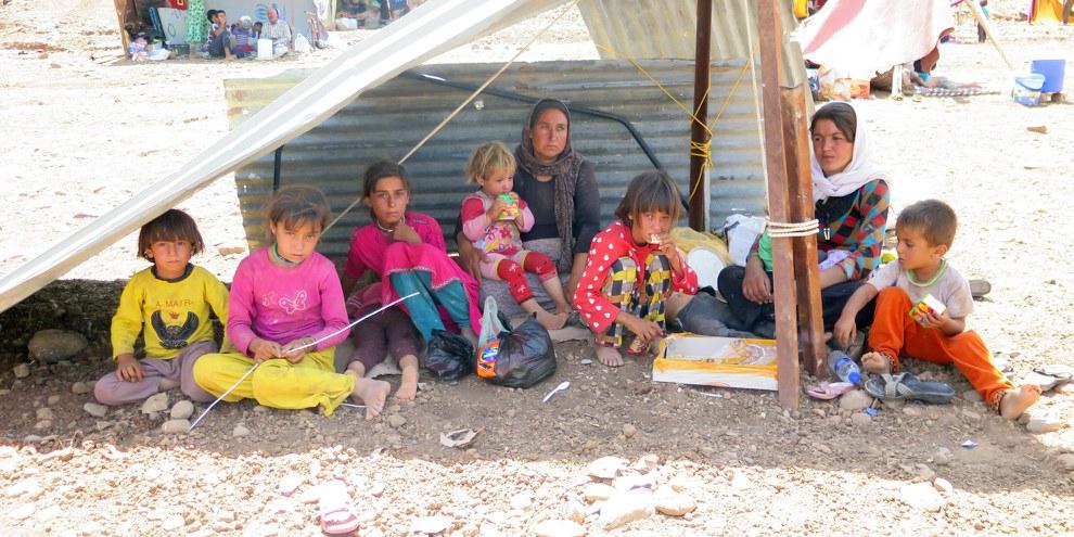 Die religiöse Minderheit der Jesiden wird vom sogenannten Islamischen Staat im Norden Iraks verfolgt. Männer und Buben wurden getötet, Frauen wurden verschleppt und versklavt. Tausende sind geflohen. Die Uno spricht von einem Völkermord. © AI