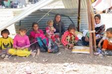 Flüchtlinge aus Irak in der Schweiz