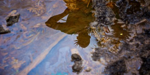 Ölverschmutzte Böden in der Gokana Community im Niger-Delta, Nigeria © Michael Uwemedimo/cmapping.net