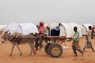 La fermeture du plus grand camp de réfugiés du monde va mettre des vies en danger