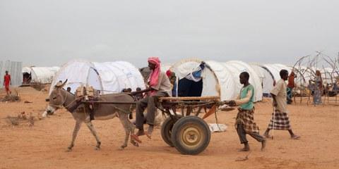 Des réfugiés somaliens arrivés dans le camp de Dadaab en juillet 2011. © UNHCR / B. Bannon