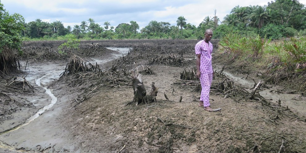 Dans le Delta du Niger, les déversements de pétrole provoquent des effets dévastateurs sur l'environnement. © Amnesty International