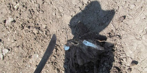 L'ombre d'un paysan expulsé d'El Tamarindo en décembre 2013. © Amnesty International