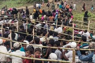 Amnesty établit que le traitement infligé aux Rohingyas s'apparente à un apartheid