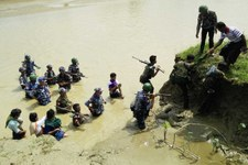 Un groupe armé rohingya a massacré des dizaines de personnes dans l'État d'Arakan
