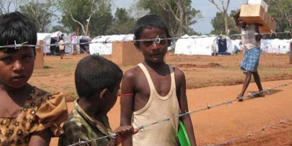 Des enfants dans le camp de Manik Farm (district de Vavuniya, nord du Sri Lanka, mai 2009).  © AI