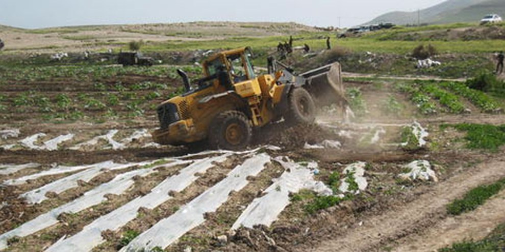 Un bulldozer de l'armée israélienne détruit les plantations et le système d'irrigation palestinien © Shabtai Gold/IRIN
