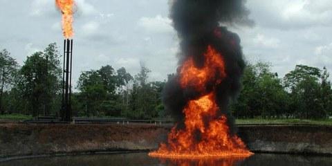 Projection du reportage «Pablo Fajardo un indien contre les compagnies pétrolières»
