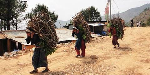 La campagne au Nepal