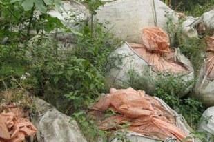 Déchets toxiques: Trafigura doit être rendue juridiquement responsable