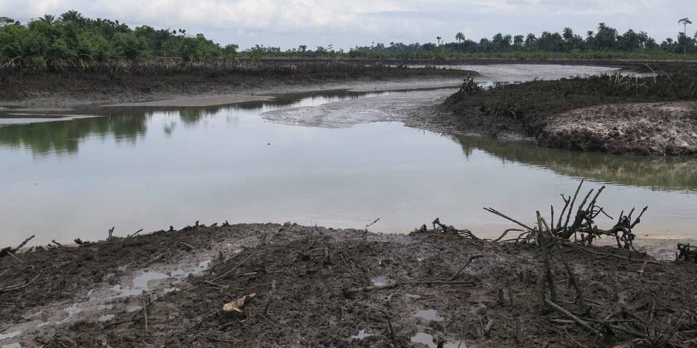Le delta du Niger: Shell -  ruisseau pollué à Kegbara Dere © Amnesty International