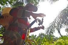 Marchi globali beneficiano di lavoro infantile e forzato