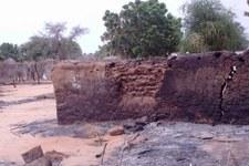 Armi chimiche contro la popolazione del Darfur